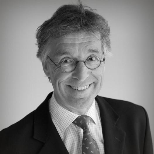 Portret prof. dr. Erik Heineman